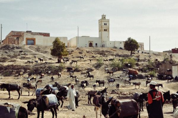 Ein Kurztrip in den Orient: Marokko